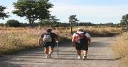 Foto camminatori