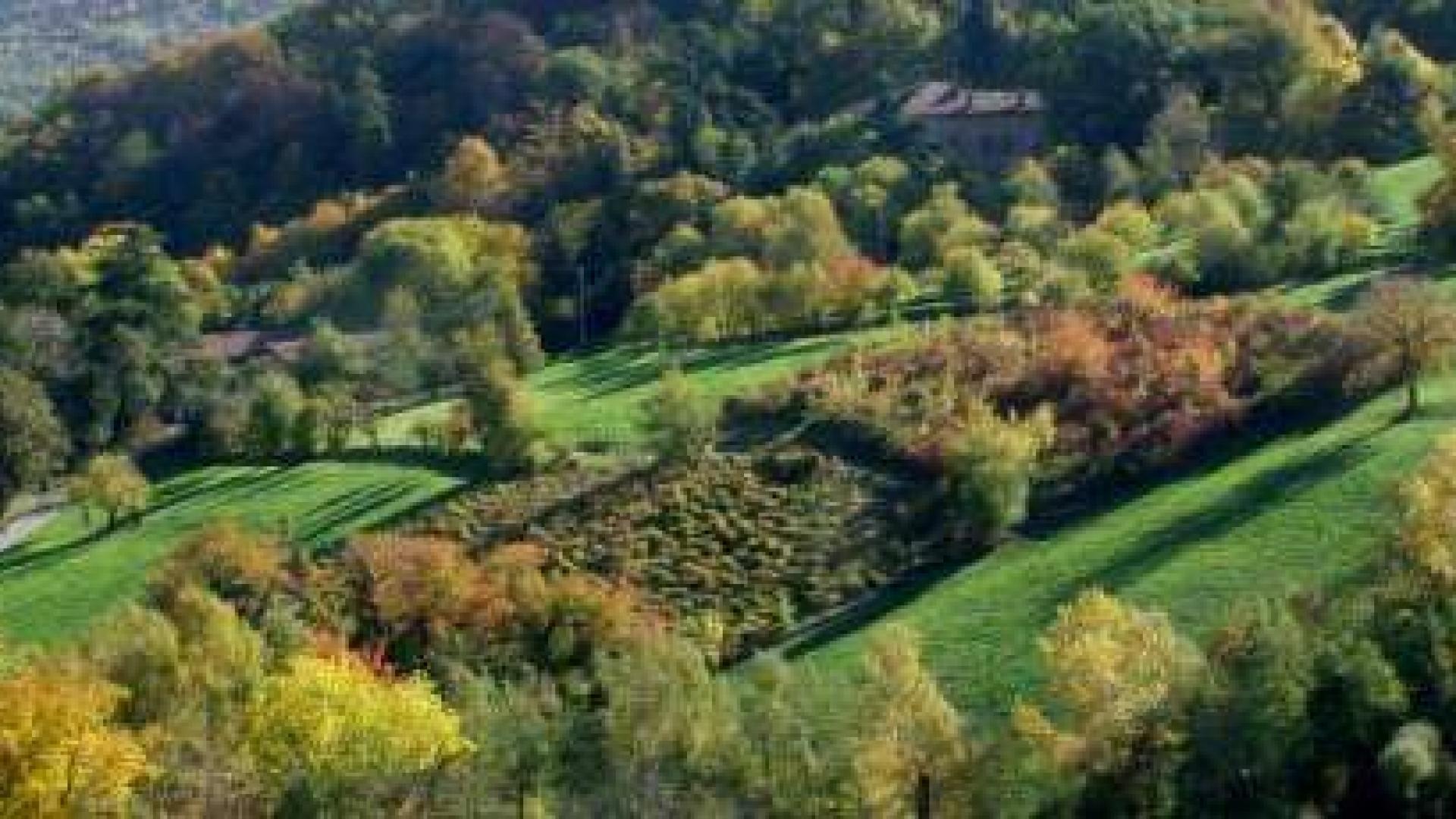 le colline di bologna