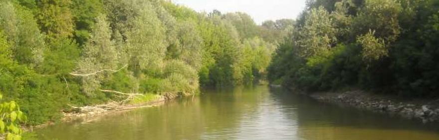 immagine del fiume reno